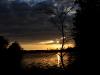2011_11_03_woods_sunrise1_large