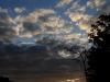2011_11_03_woods_sunrise2_large